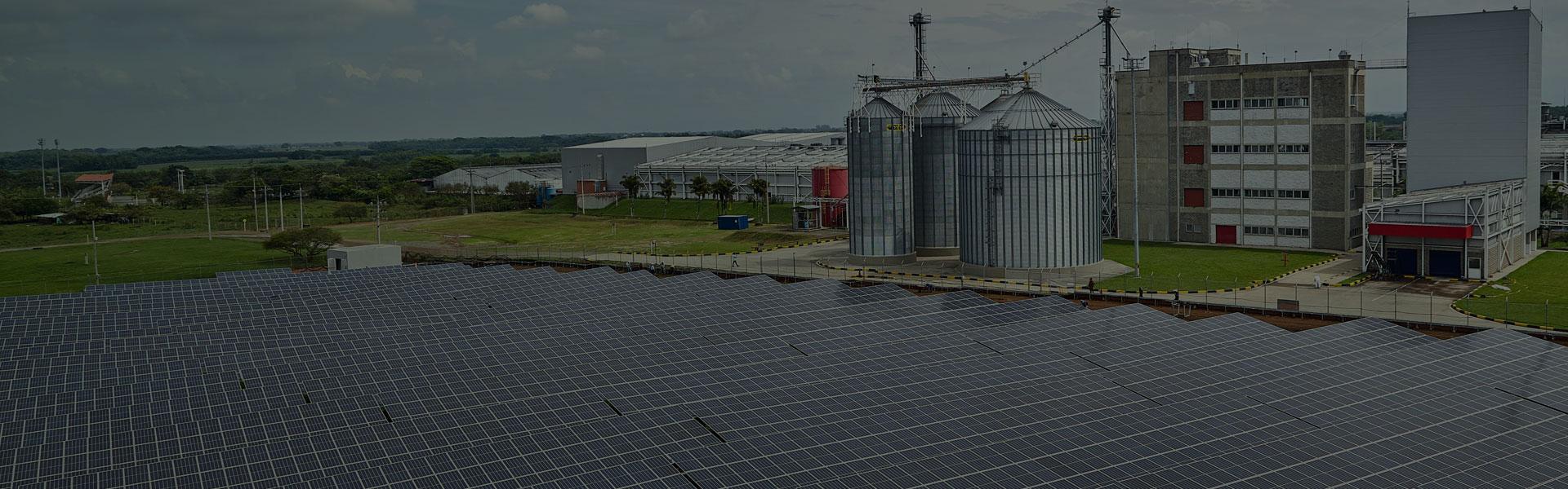 CEO y Colombina le apuestan a las energías renovables con planta de Autogeneración de Energía Solar en Santander de Quilichao